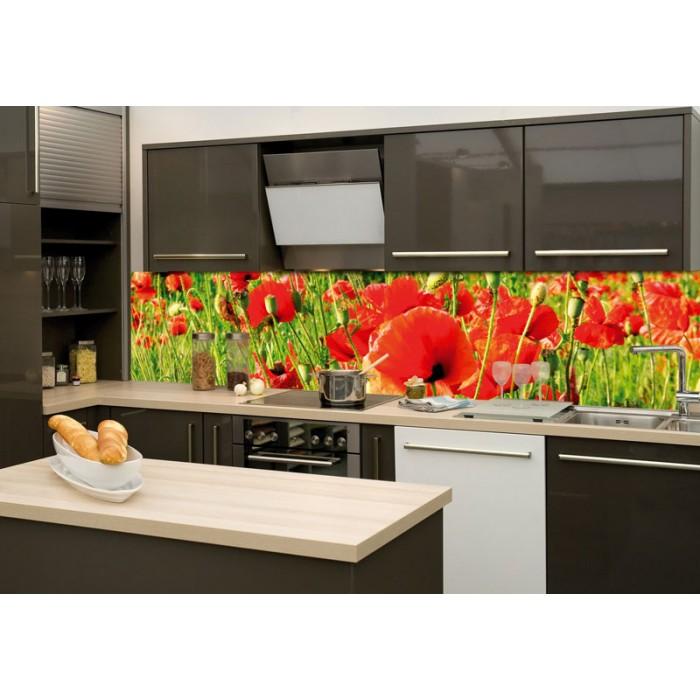 Küchenrückwand Glas - Rote Mohnblumen   dimex-line.de