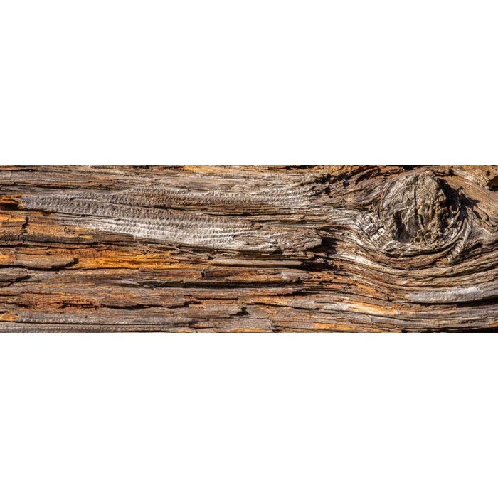 K chenr ckwand folie baumrinde 180 x 60 cm dimex - Tapete kuchenruckwand ...