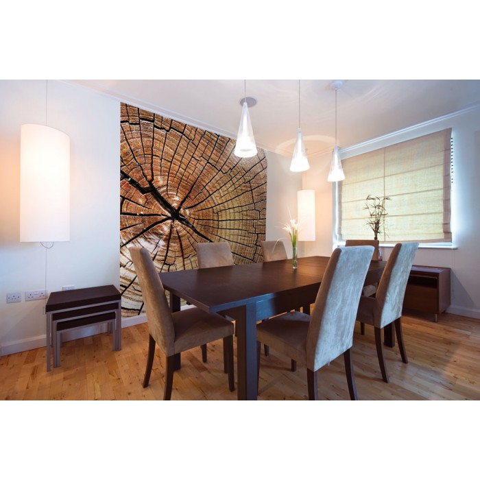 vlies fototapete holz 220 x 220 cm dimex. Black Bedroom Furniture Sets. Home Design Ideas
