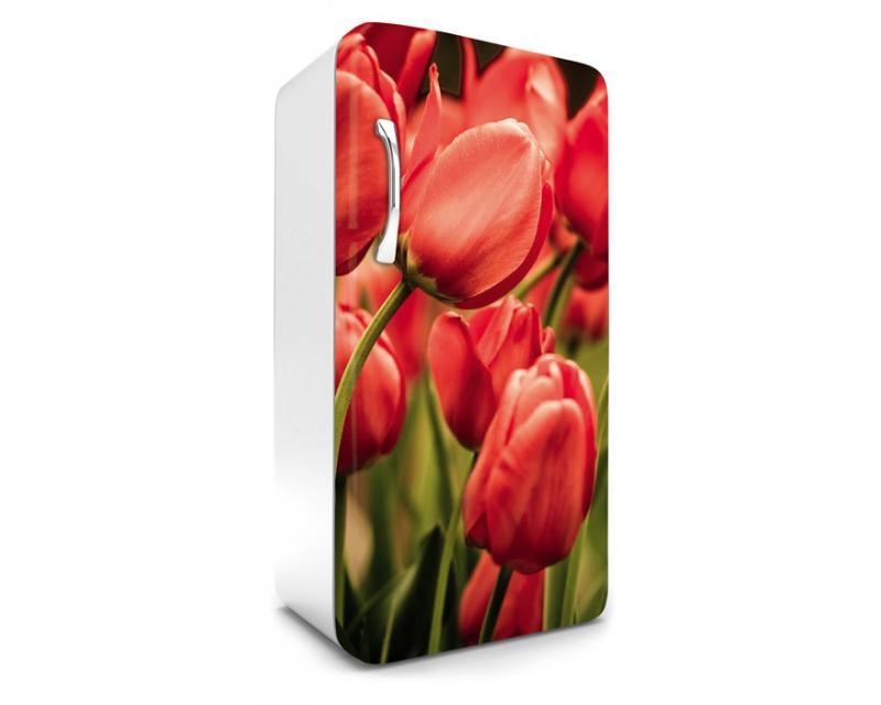 Kühlschrank Aufkleber : Kühlschrank aufkleber rote tulpen cm dimex line