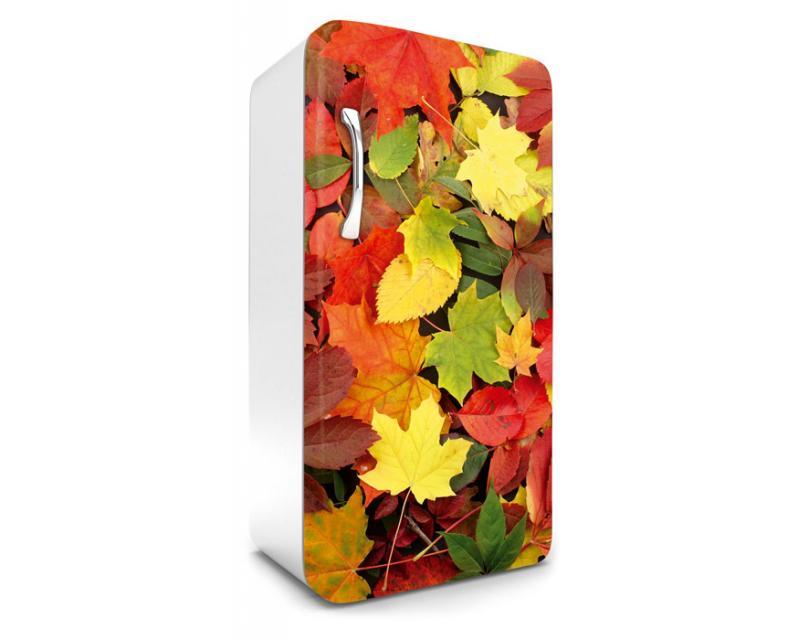 Kühlschrank Aufkleber : Kühlschrank aufkleber bunte blätter cm dimex line