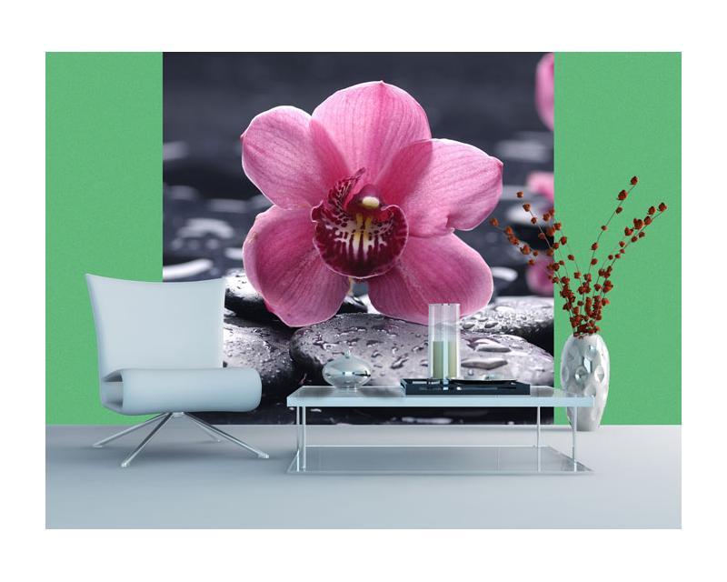 vlies fototapete orchidee 220 x 220 cm dimex. Black Bedroom Furniture Sets. Home Design Ideas